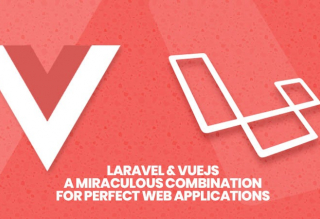 Software development with Vue and Laravel